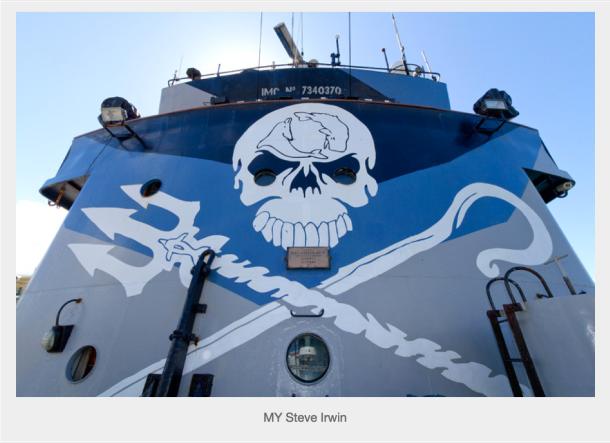 Sea Shepherd logo painted on the M/Y Steve Irwin (Photo: Sea Shepherd Conservation Society)